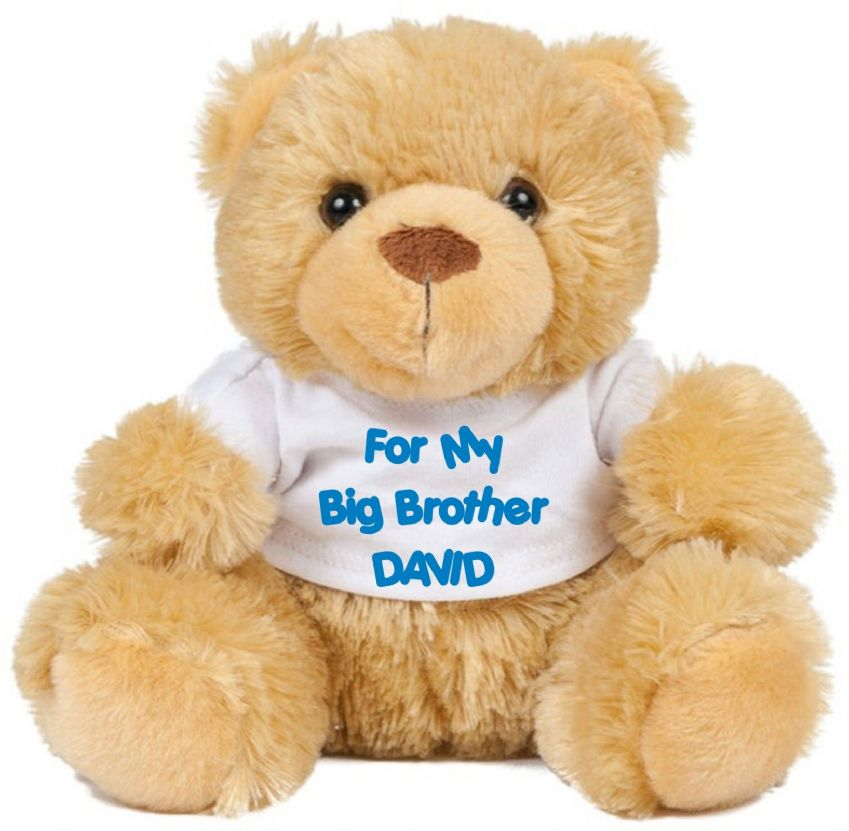Teddy Bear For Big Brother / Sister